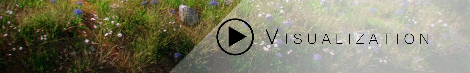 websiteMovieButton_Visualization